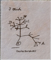 Tree of Life by Charles Darwin